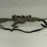 AR15 in Reaper Buck