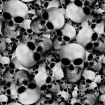 GH-001: Skullz