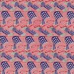 GH-034: American Flag